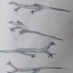 funny gekko